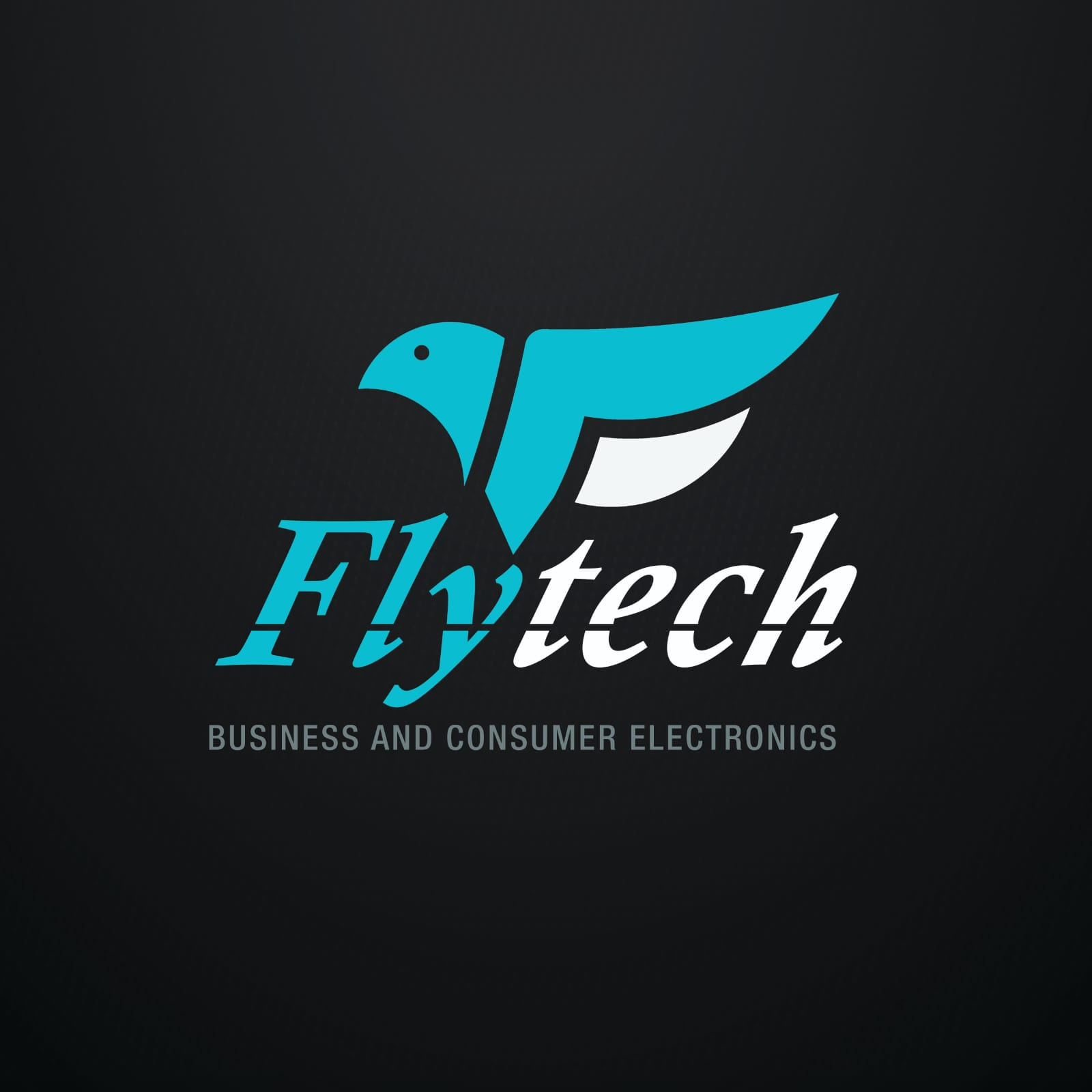 Flytech Business & Consumer Electronics